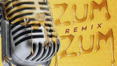 Daddy Yankee RKM & Ken-Y Arcangel Plan B y Natti Natasha - Zum Zum (Remix)